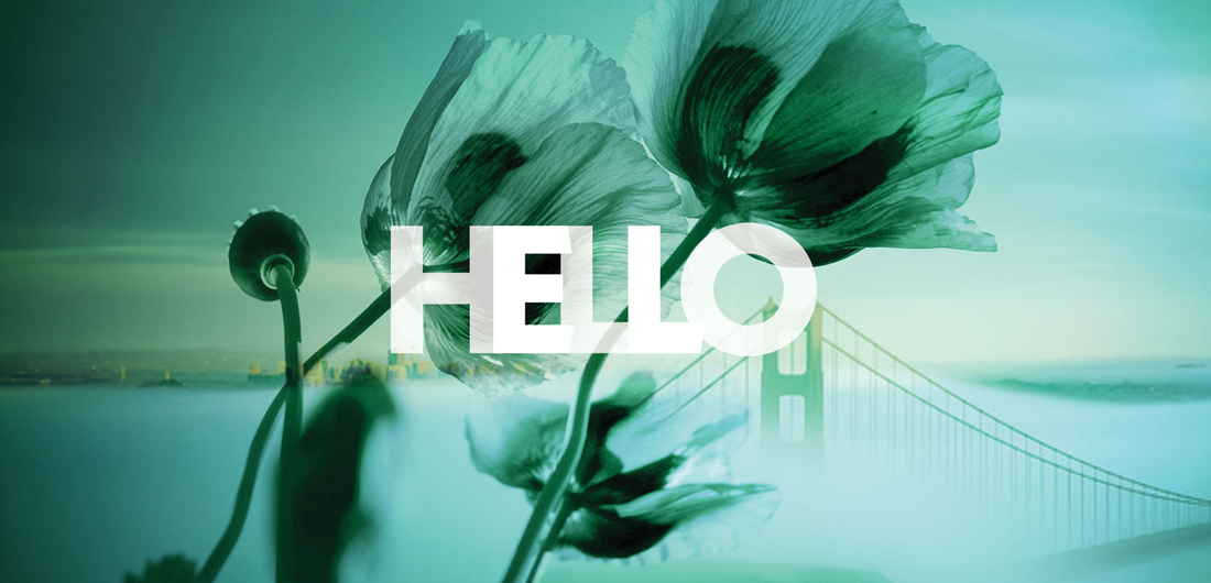 bold typography, double exposure photo with close-up of poppies and wide shot of Golden Gate Bridge in SF