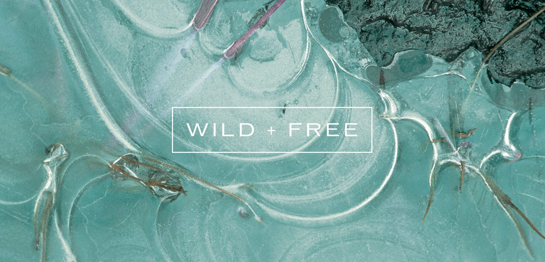 wild and free typography design on close up teal turquoise image, Cliff House spa branding agency
